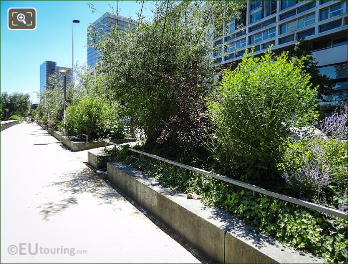 Allee Arthur Rimbaud Plants