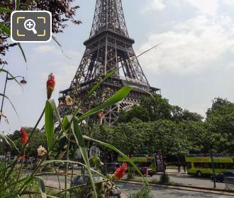 Eiffel Tower From Promenade Quai Branly