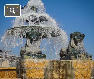 Fontaine Aux Lions De Nubie Lion Statues
