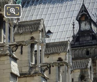 Gargoyles On South Facade Of Notre Dame
