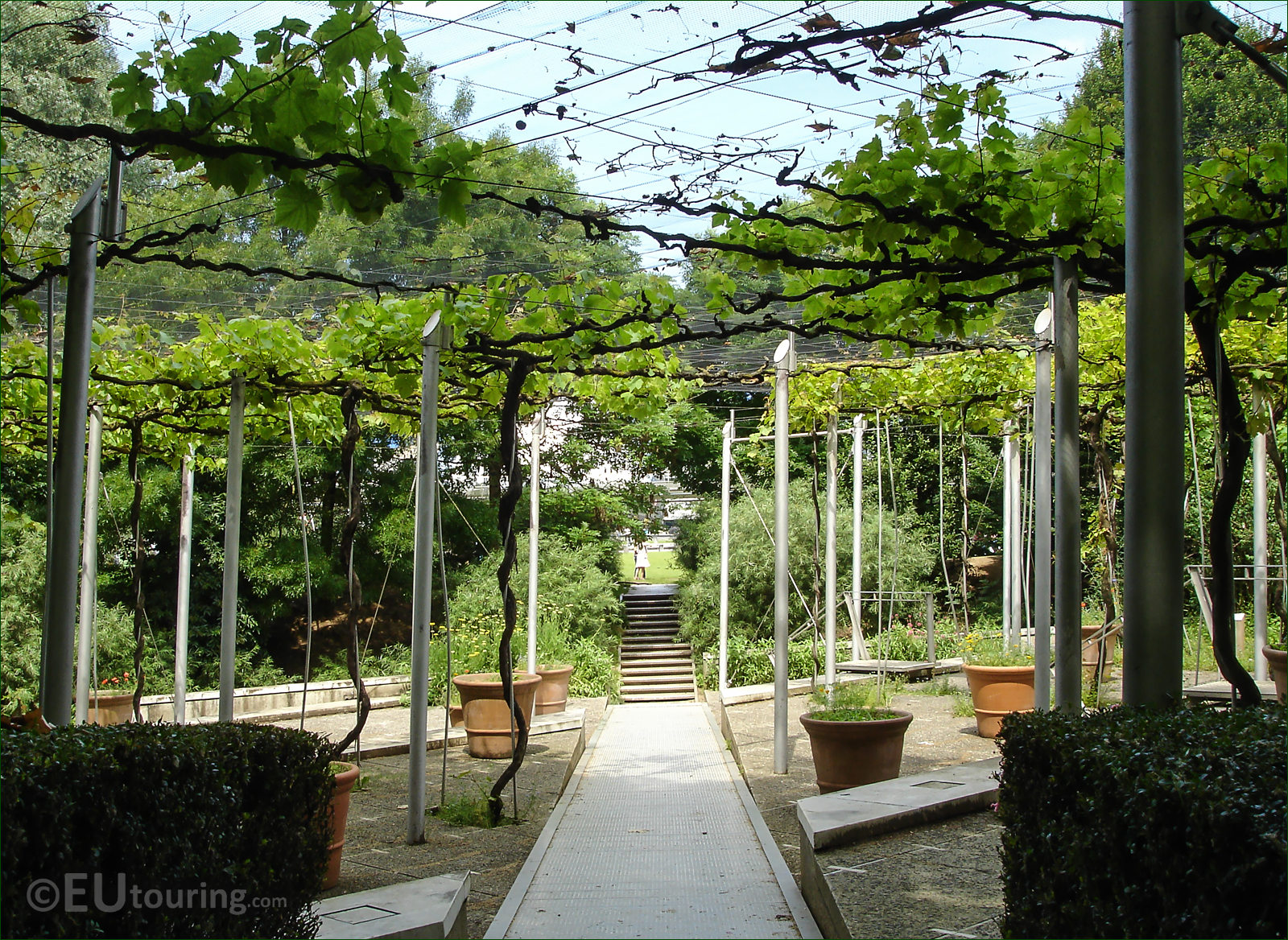 hd photos of jardin de la treille vineyard inside parc de la villette. Black Bedroom Furniture Sets. Home Design Ideas