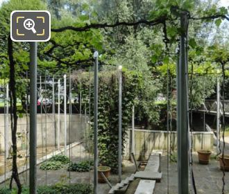 Jardin De La Treille Terrace Gardens