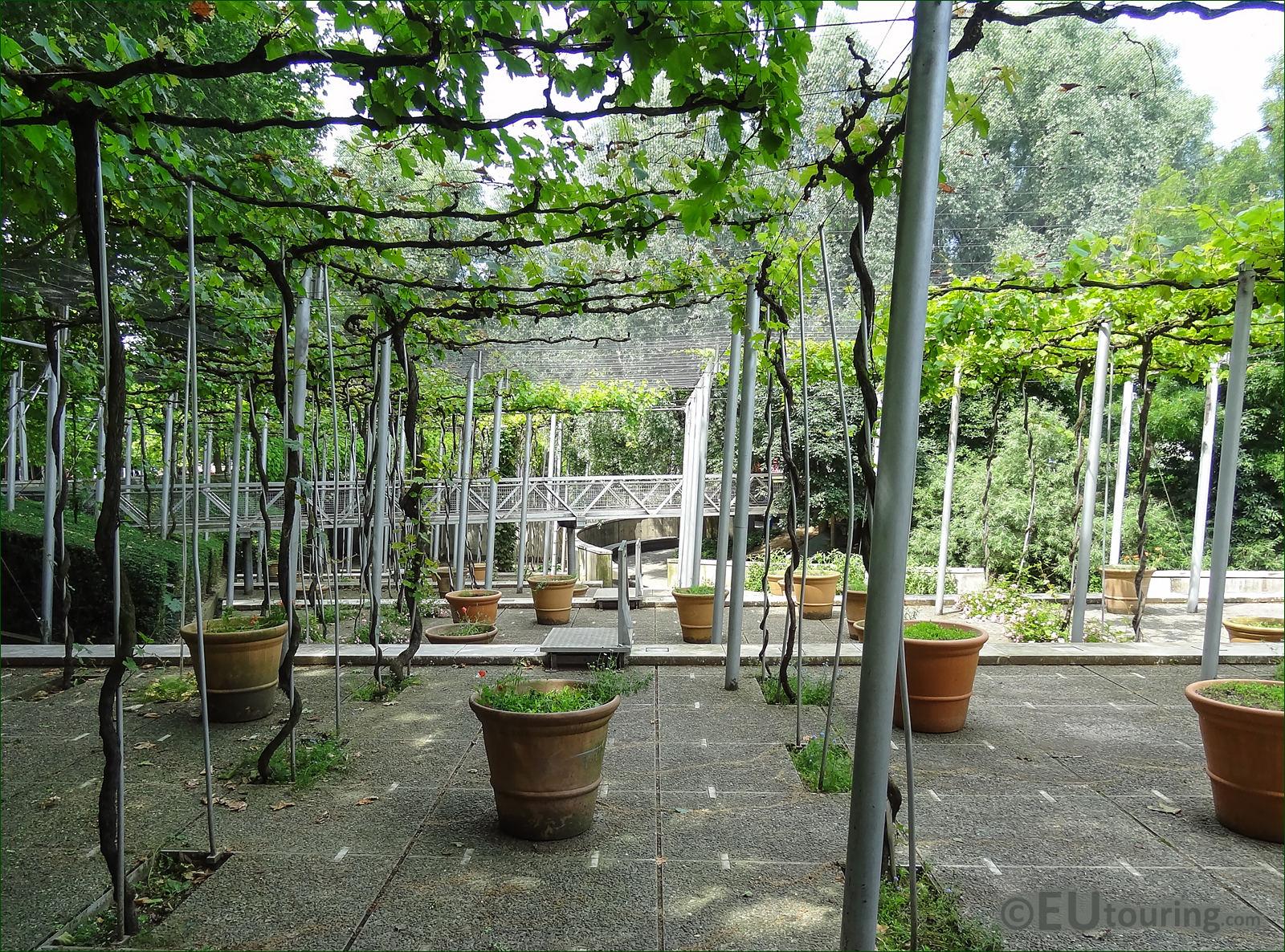 Hd photos of jardin de la treille vineyard inside parc de for Garden jardin
