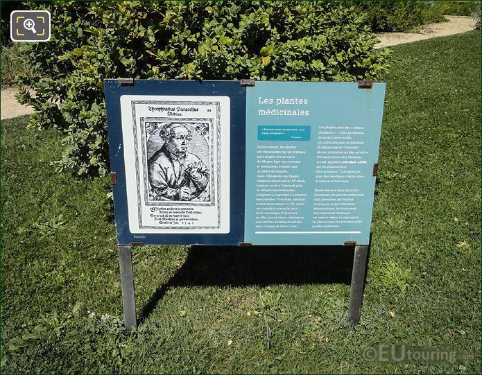 Medicinal Plants Information Jardin Des Plantes