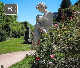 Roseraie Jardin Des Plantes