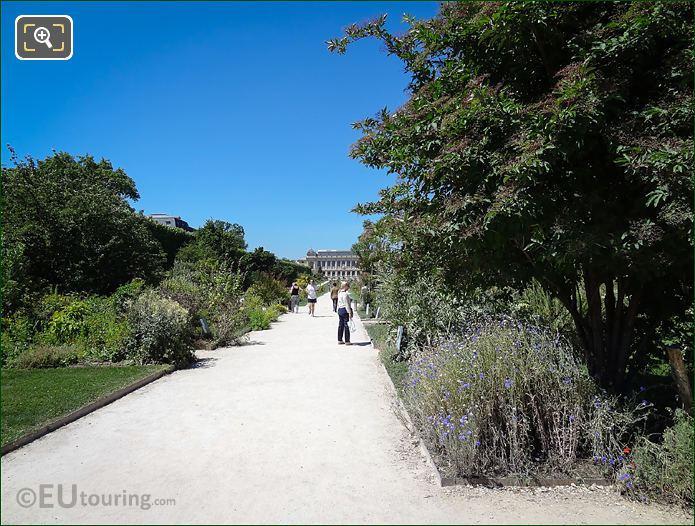 Plants And Shrubs Jardin Des Plantes