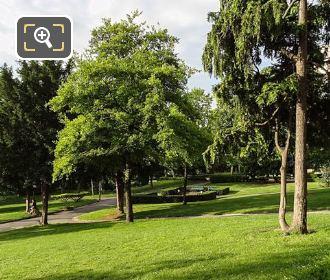 Different Varieties Of Trees Inside Jardins Du Trocadero