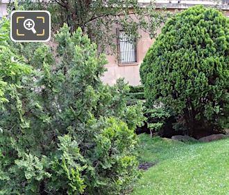 Evergreen Shrubs Inside Trocadero Gardens
