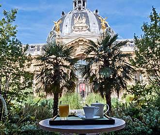 Le jardin du petit palais cafe in paris for Cafe le jardin du petit palais
