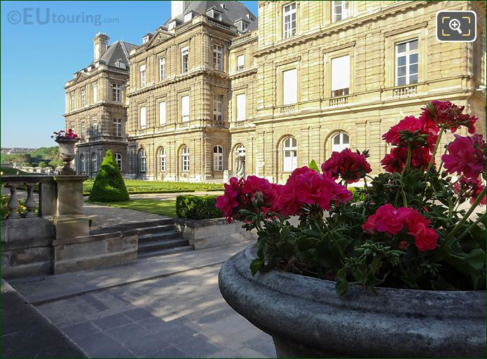Palais Du Luxembourg East Facade Stone Flower Pots Topiary Tree