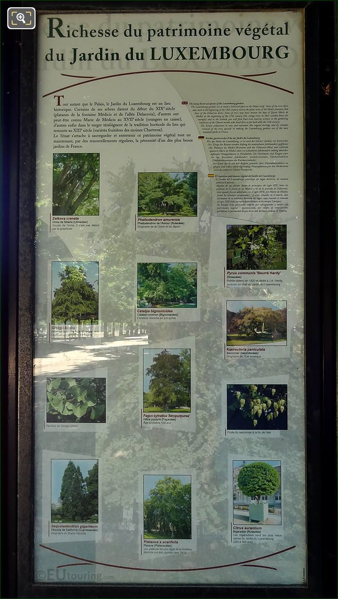 Tourist Information For Historical Trees In Jardin Du Luxembourg