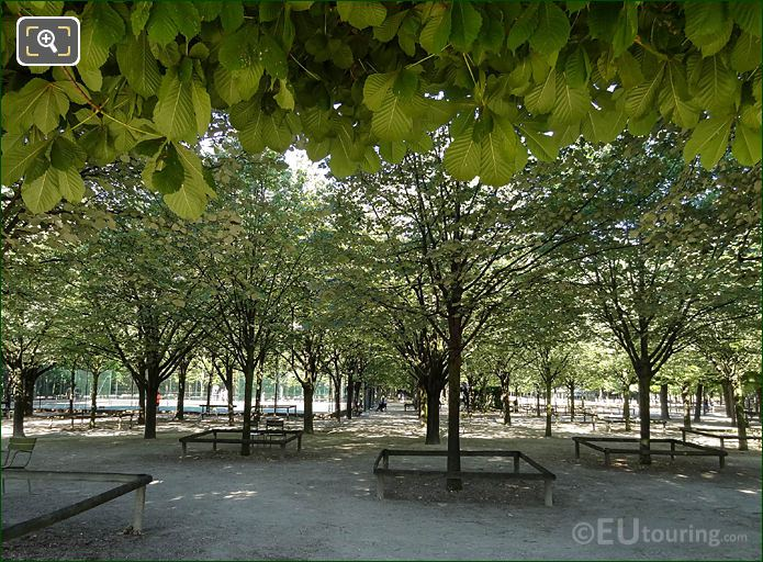 Jardin Du Luxembourg Tennis Courts Through Trees Western Side