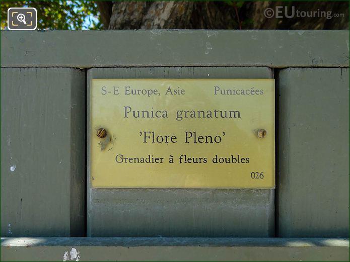 Tourist Information Plaque On Pot 26 Jardin Du Luxembourg