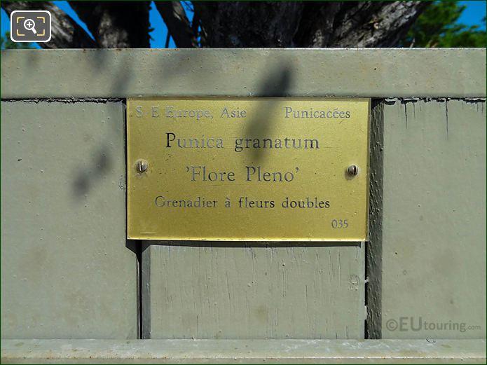 Tourist Information Plaque Plant Pot 35 Jardin Du Luxembourg