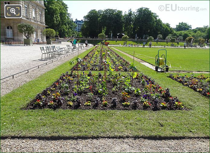 Flowerbed Front Of Palais Du Luxembourg In Jardin Du Luxembourg
