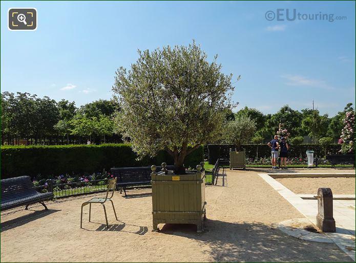 East Water Point In Jardin Du Luxembourg Rose Garden