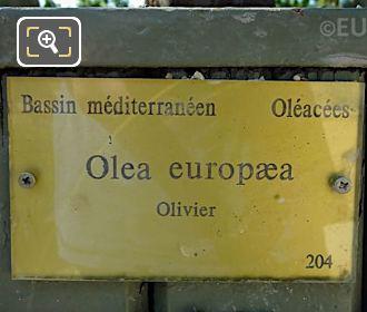 Tourist Information Plaque On Pot 204 Jardin Du Luxembourg