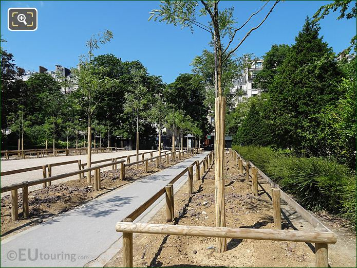 New Trees In Jardin Du Luxembourg West Gardens