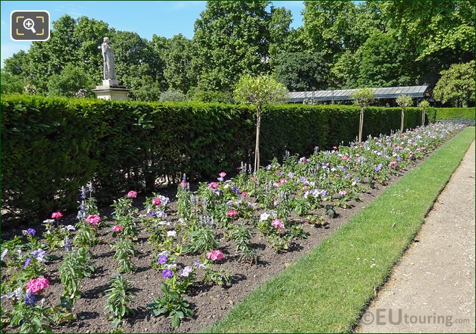 Flowering Bedding Plants Next To Rose Garden In Jardin Du Luxembourg