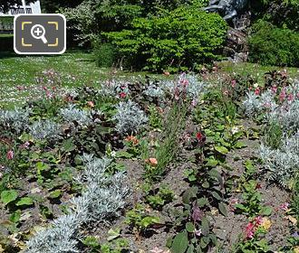 Round Flowerbed With Bedding Plants In Jardin Du Luxembourg