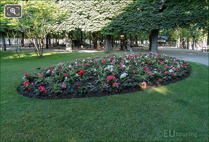 Oval Flowerbed Bedding Plants East Side Jardin Du Luxembourg