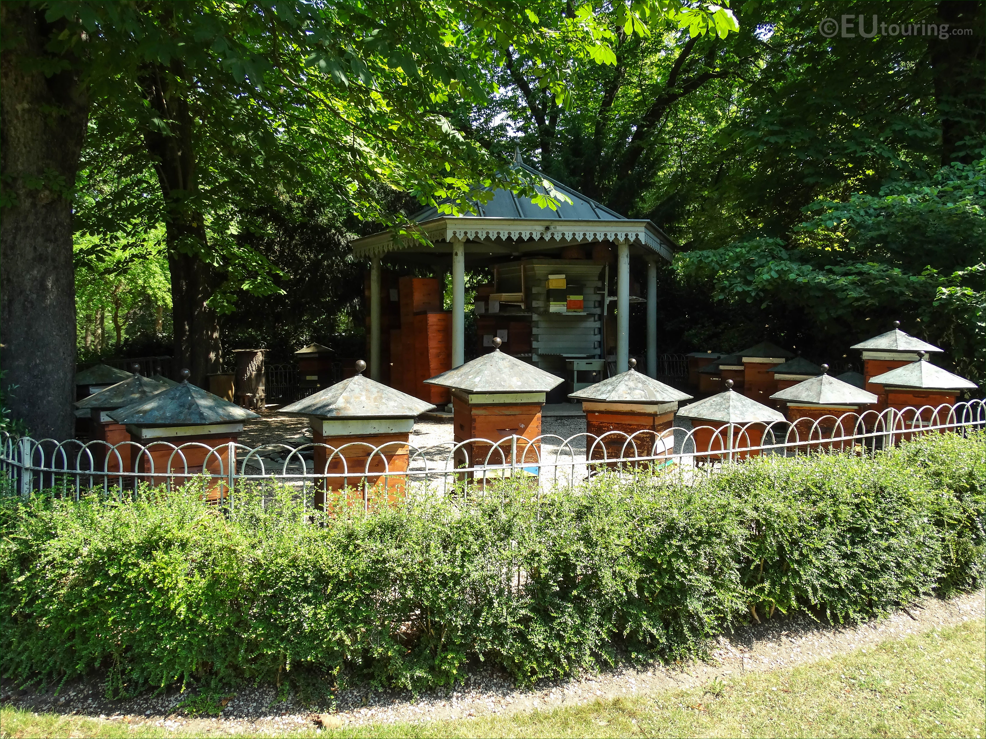 Photos Of Apiary Beehives In Jardin Du Luxembourg Page 5