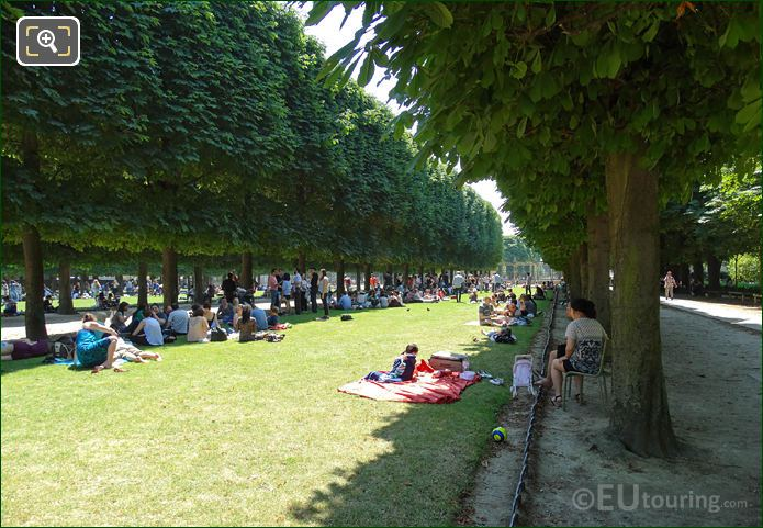 Jardin Du Luxembourg South End Garden Trees And Grass