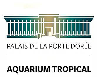 Palais de la porte doree tropical aquarium in paris - Aquarium tropical de la porte doree ...