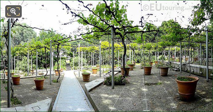 Jardin De La Treille Parc Villette
