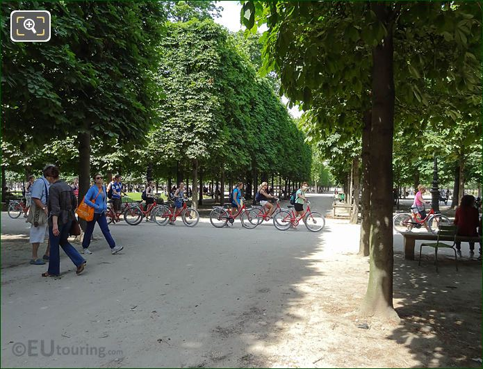 Fat Tire Bike Tours On Grande Allee Du Jardin Des Tuileries