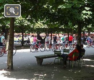 Tourists On Fat Tire Bike Tour In Jardin Du Tuileries