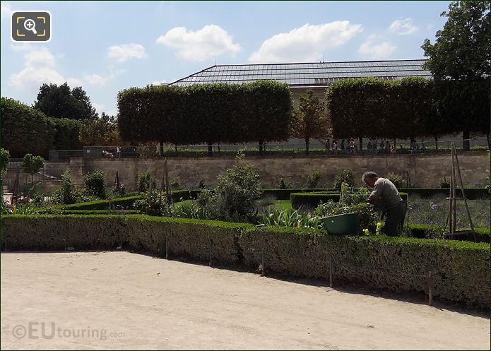 Jardin des Tuileries Gardener