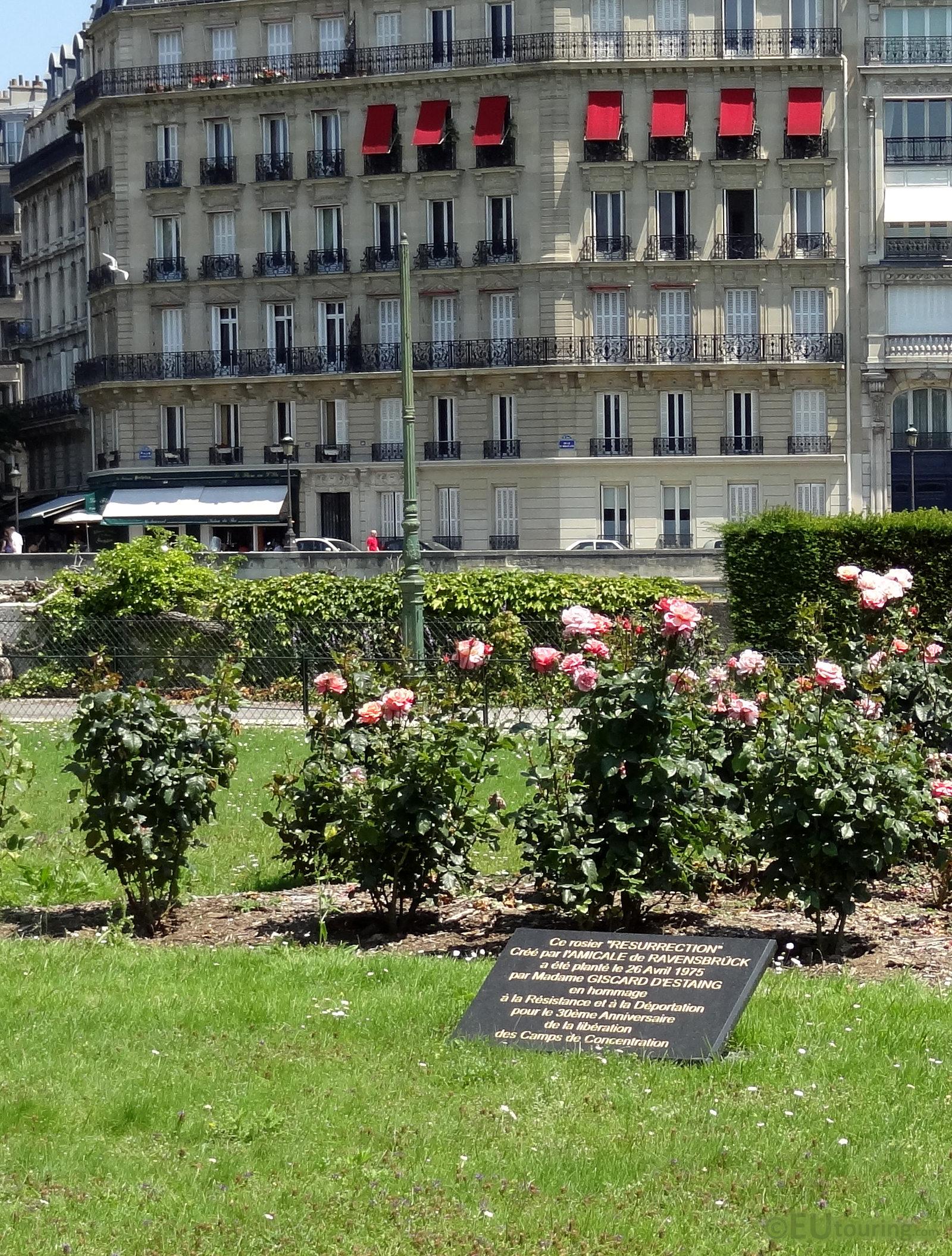 photos of square de l 39 ile de france in paris page 1. Black Bedroom Furniture Sets. Home Design Ideas
