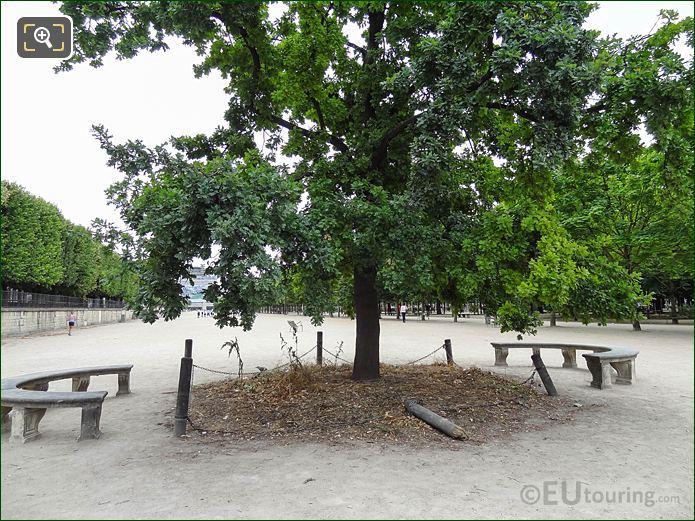 Le Chene De La Republique Oak Tree Monument