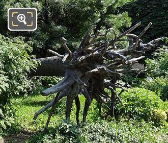 L'Arbre Des Vyelles Sculpture In Jardin Des Tuileries