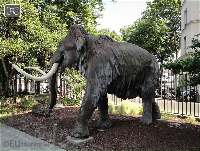Jardin Des Plantes Woolly Mammoth Sculpture