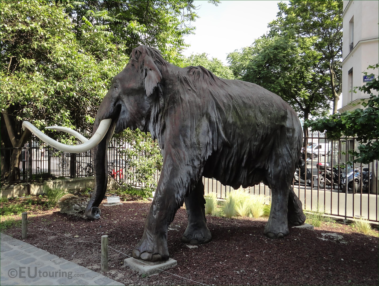 Hd Photos Of Woolly Mammoth Sculpture In Jardin Des Plantes Page 146