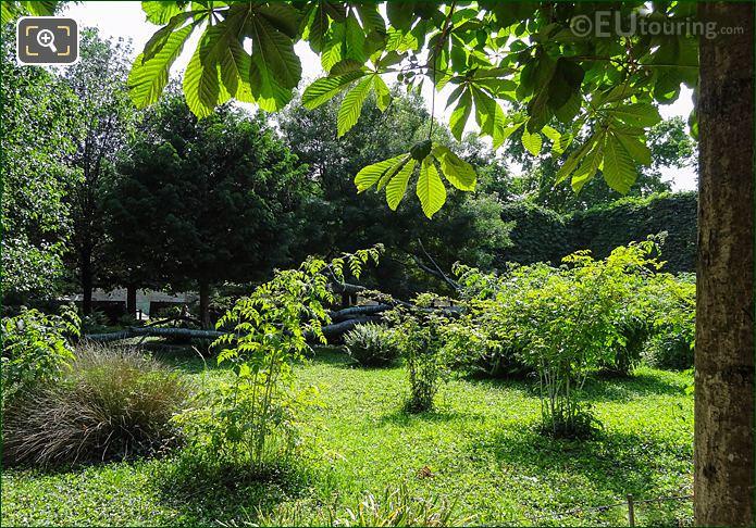 Garden Of The Tree Of Vowels Jardin Des Tuileries