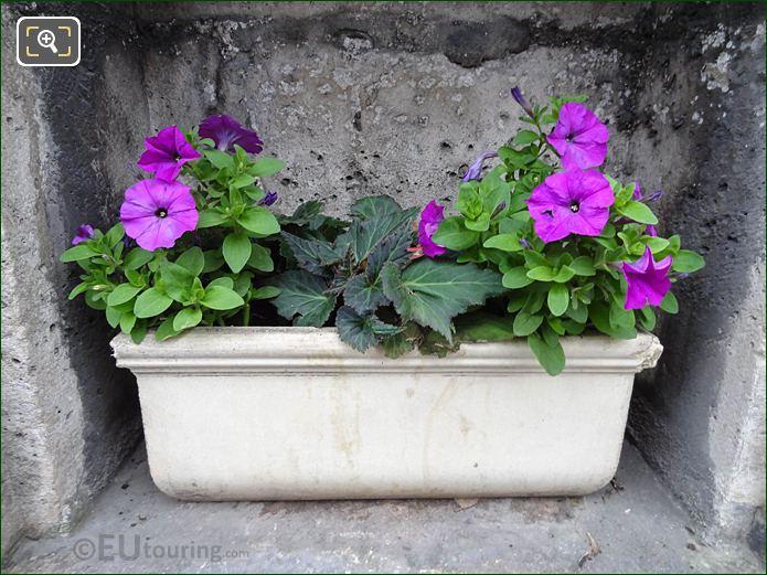 Flowers For Raymond Mestracci WW II Memorial