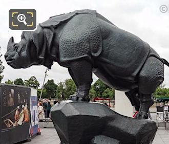 Left Hand Side Of Rhinoceros Statue