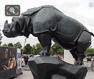 Left Hand Side Of Rhinoceros Statue