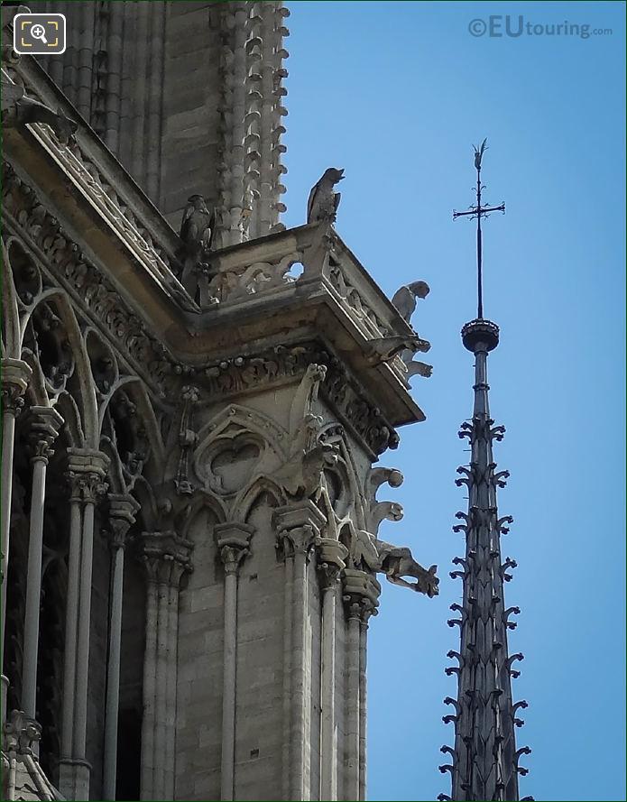 Notre Dames Chimera Statues