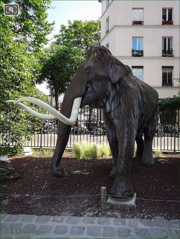 Jardin Des Plantes Woolly Mammoth Statue