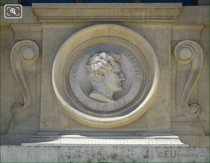 Georges Cuvier Bust Statue Paris