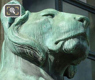 Head Of RHS Bronze Lioness Statue Porte Jaujard