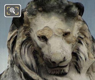 LHS Lion Statue By Artist Emmanuel Fremiet