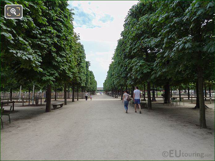 Allee Sous Couvert Nord Inside Jardin Des Tuileries Looking South East