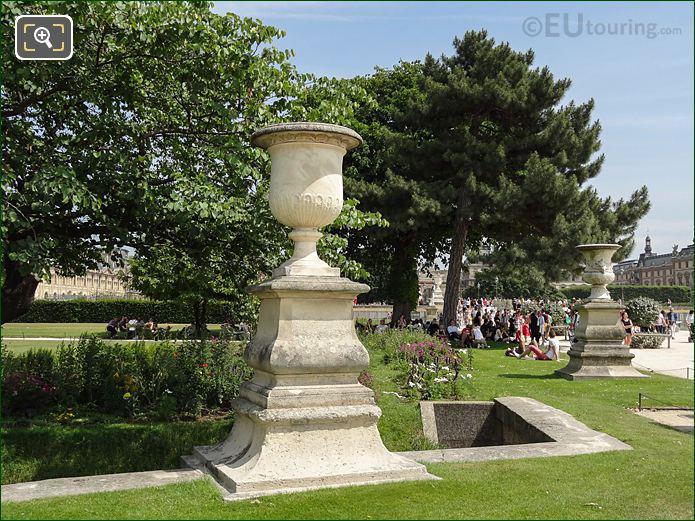Pin De Corse Tree Demi-lune Reserve Nord Jardin Tuileries