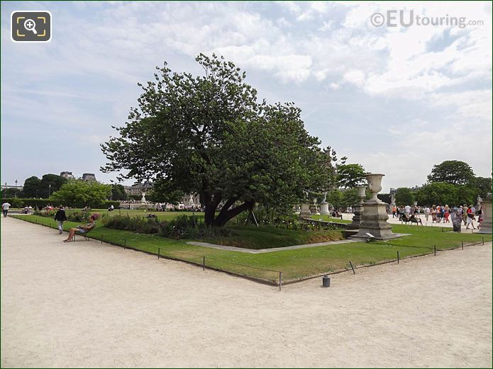 Demi-lune Reserve Nord In Jardin Des Tuileries Looking South, South East