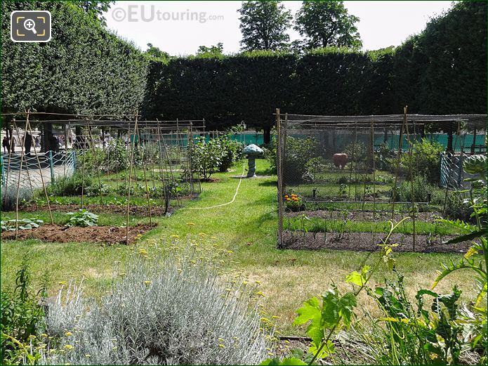 Jardin Des Tuileries Grand Couvert Vegetable Garden